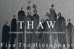 Thaw-Button